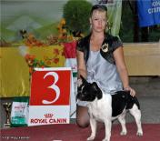 Vital Way Beaute Blanc et Noire (kennel Vital Way)