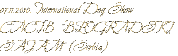 "07.11.2010. International Dog Show CACIB  ""BEOGRADSKI SAJAM"" (Serbia)"