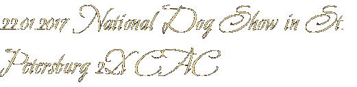 22.01.2017 National Dog Show in St. Petersburg 2X CAC
