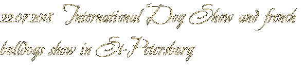 22.07.2018  International Dog Show and french bulldogs show in St-Petersburg